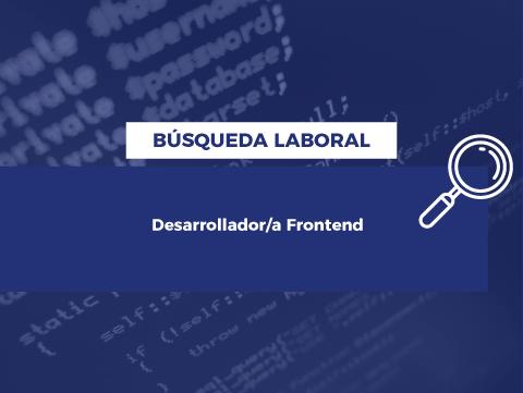 web_busqueda